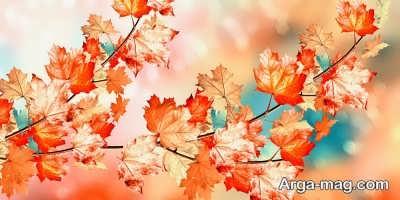 متن ناب در مورد فصل پاییز