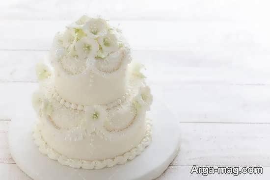 مجموعه ای ایده آۀ و ناب از کیک عروسی 2 طبقه