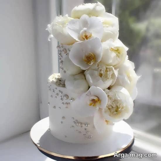 ایده هایی زیبا و دوست داشتنی از کیک عروسی دو لایه ای