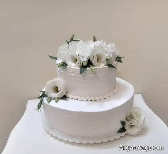 انواع کیک های عروسی دو طبقه با تزیینات زیبا