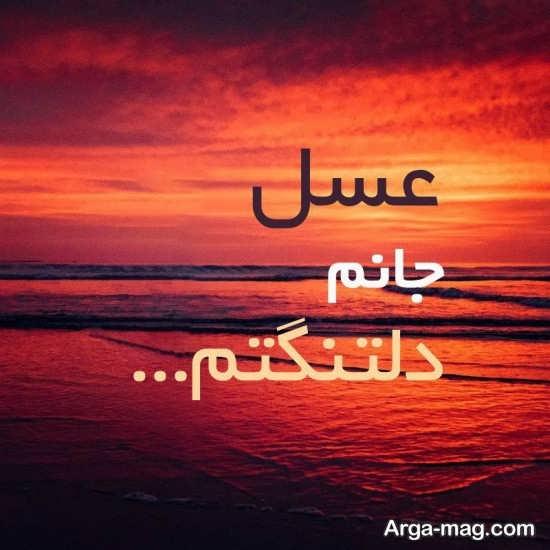 انواع عکس نوشته دلتنگی برای اسم عسل