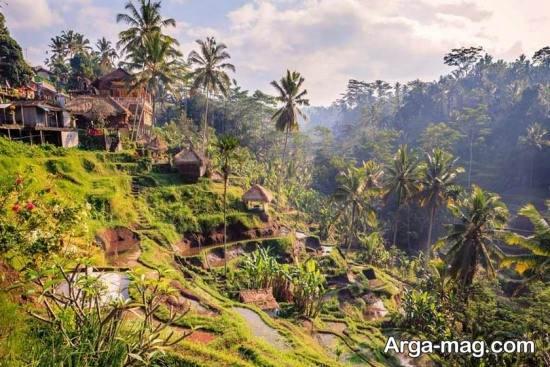 ارتفاعات شرق آسیا