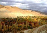 آشنایی با روستای برغان