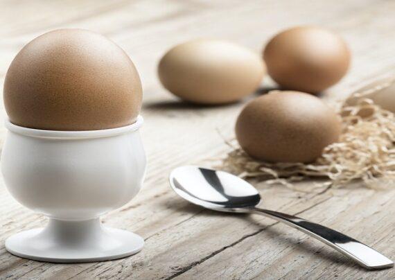 مزایای تخم مرغ برای سلامتی