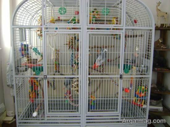مجموعه ای ایده آل و متنوع از تزیین قفس پرنده