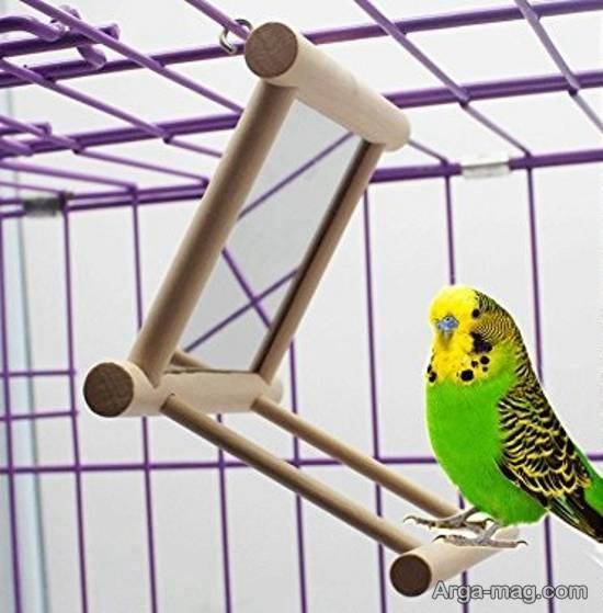 نمونه هایی ایده آل و جذاب برای دیزاین قفس پرنده