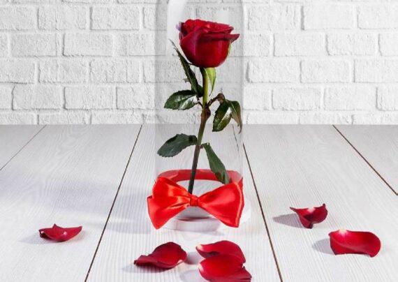 ایده هایی زیبا و شیک از تزیین گل رز تک شاخه