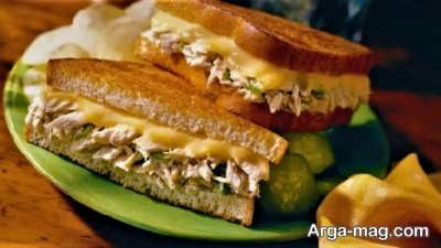 آموزش طرز تهیه ساندویچ تن ماهی و قارچ پنیر