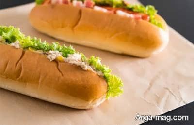 طرز تهیه ساندویچ تن ماهی به چه صورت است؟