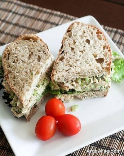آشنای با انواع طرز تهیه ساندویچ تن ماهی