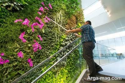 چگونگی کاشت گیاهان پوششی