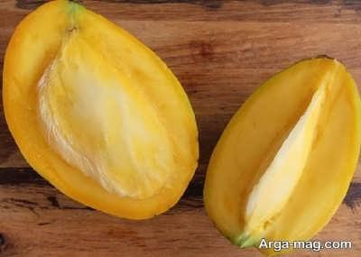 میوه خوشمزه انبه در حاملگی
