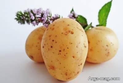 سیب زمینی در دوران بارداری و فوائد آن