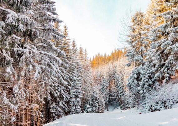متن زیبا درباره برف