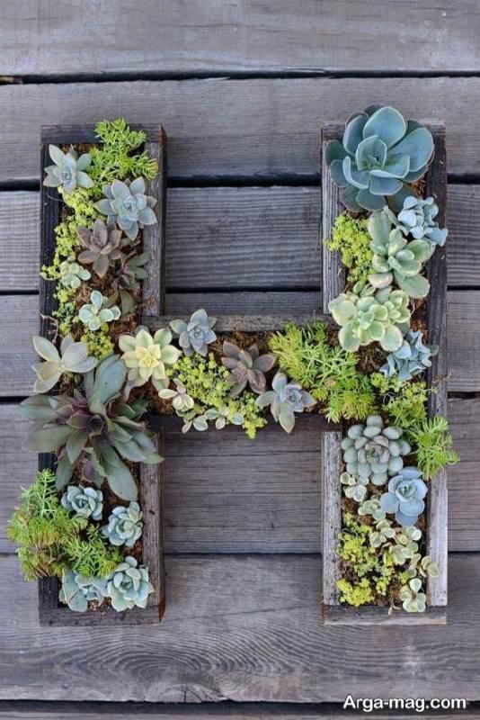 آموزش ساخت باغچه دیواری برای تزیین منزل