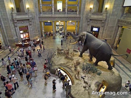 موزه واشنگتن