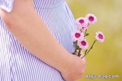 گل محمدی در بارداری
