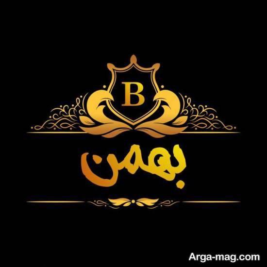 ایده های زیبای تصویر نوشته بهمن