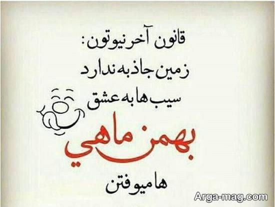 عکس متن دار بهمن ماه برای تزیین پروفایل