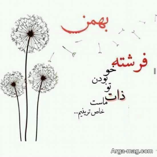 ایده های زیبایی از عکس نوشته بهمن ماه