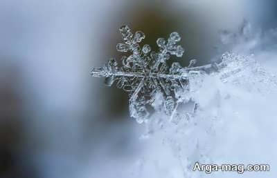 شعر دلنشین در مورد زمستان