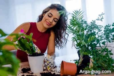 پرورش گل های سریع الرشد