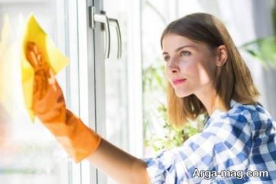 تمیز کردن هوای خانه با راه های طبیعی