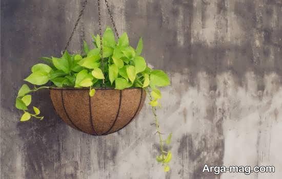 انواع مدل گلدان آویز برای طراوت بخشیدن به خانه