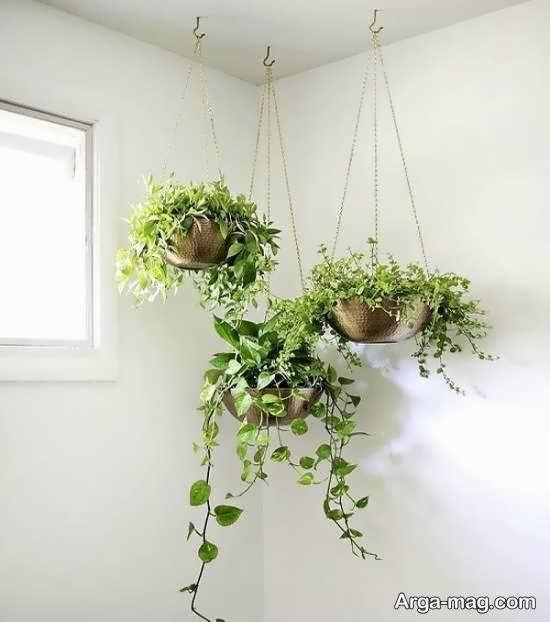 زدیزاین و طراحی مکان های خارجی و داخلی با انواع طرح های گلدان آویز