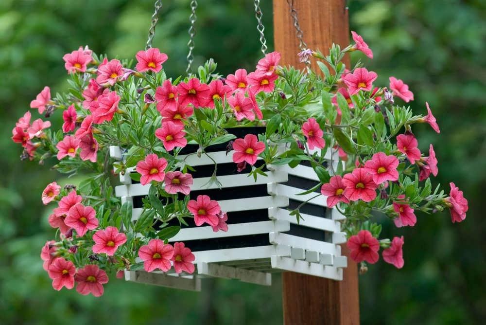 گالری زیبایی از نمونه های گلدان آویز