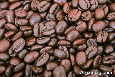 چگونگی تهیه کود با تفاله قهوه