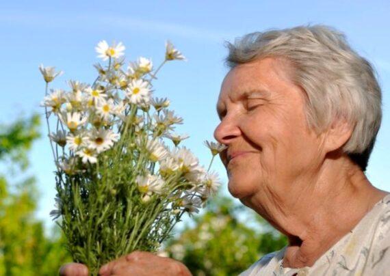 روش بازگرداندن حس بویایی