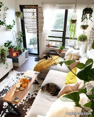 گل های ایده آل برای اتاق خواب
