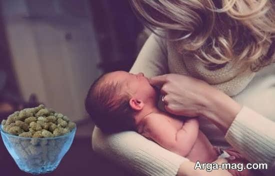 خواص خوردن توت در حاملگی
