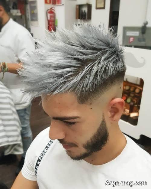 رنگ موی خاکستری