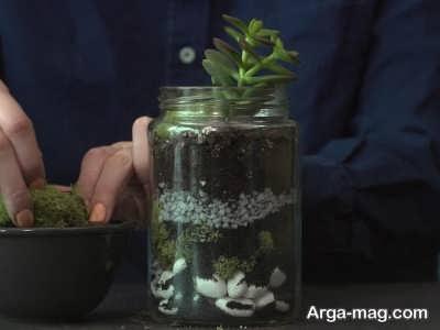 چگونگی ساخت تراریوم با شیشه مربا