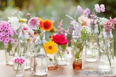 انواع گل های بهاری