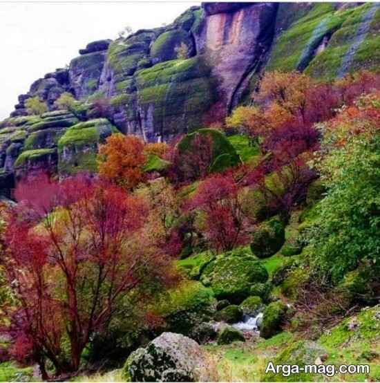 پارک جنگلی مخمل کوه