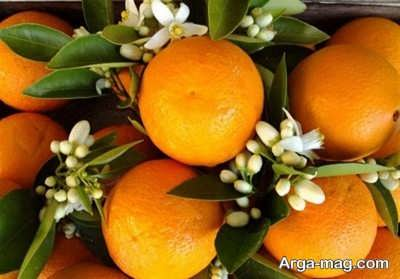 تعبیر دیدن نارنج بیانگر چه چیزی می باشد ؟