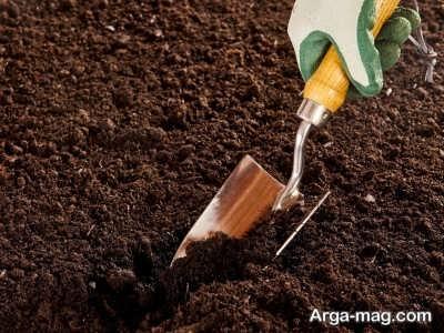 خاک غنی برای بستر گیاه رز