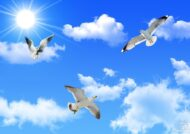 شعر درباره آسمان