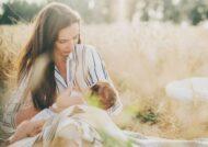 بررسی بارداری در دوران شیردهی