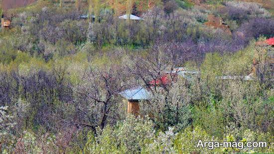 آشنایی با آبادی تالون یکی از آبادی های جذاب تهران