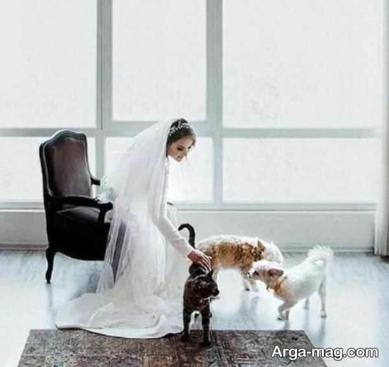 عکس های آتلیه ای عروسی پیمان قاسم خانی و همسرش
