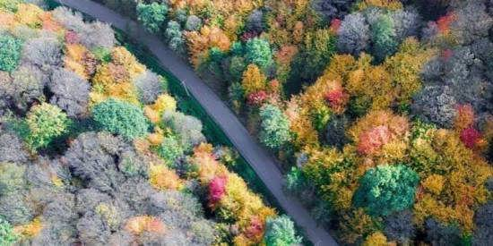 آشنایی و بازدید از پارک جنگلی النگ دره