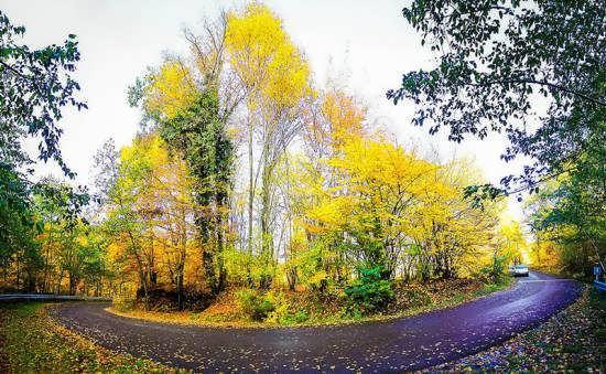 آشنایی با پارک جنگلی واقع در النگدره