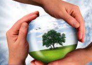 جملات زیبا درباره محیط زیست