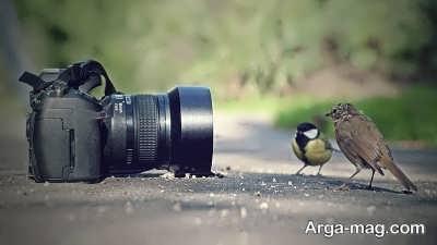 جملاتی در مورد عکاسی
