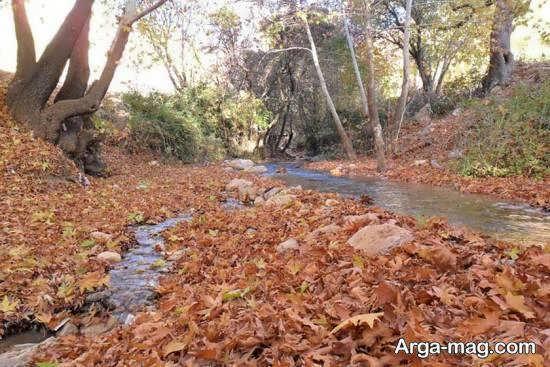 آشنایی با دره گنجه ای واقع در یاسوج