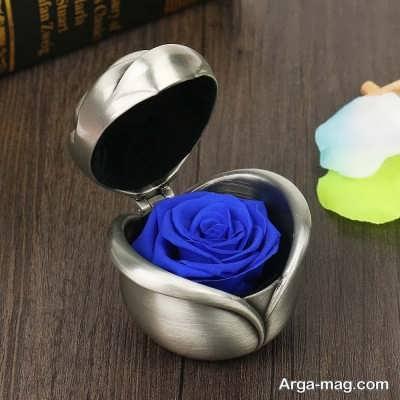 نکات مهم برای نگهداری گل رز جاودان